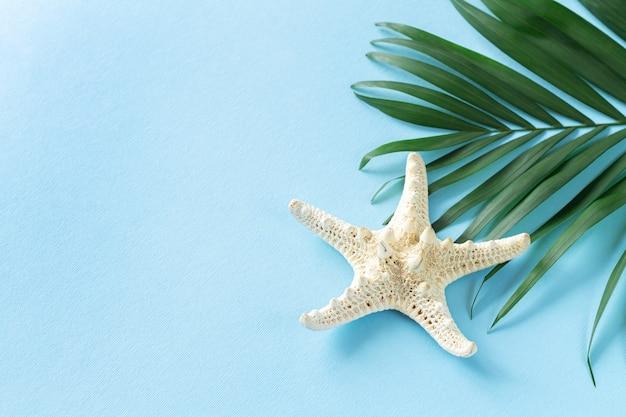 큰 불가사리 바다 조개와 열대 야자수 잎 클로즈업