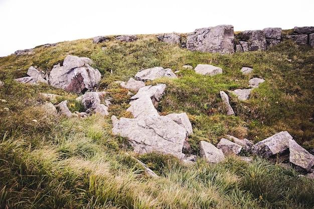큰 돌은 녹색 숲 사이의 빈터에 놓여 있습니다.