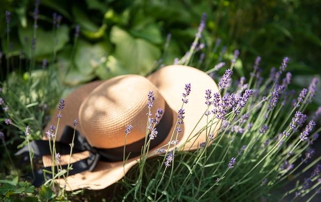 Большая соломенная шляпа в кустах лаванды. романтическая летняя концепция.