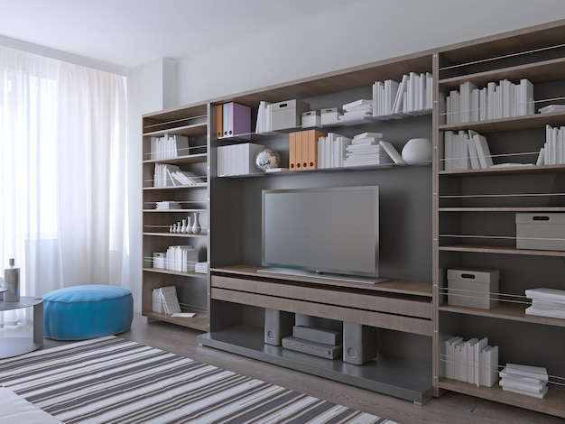 Large wall systems furniture.