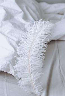 Большое белое перо на кровати. домашний комфорт
