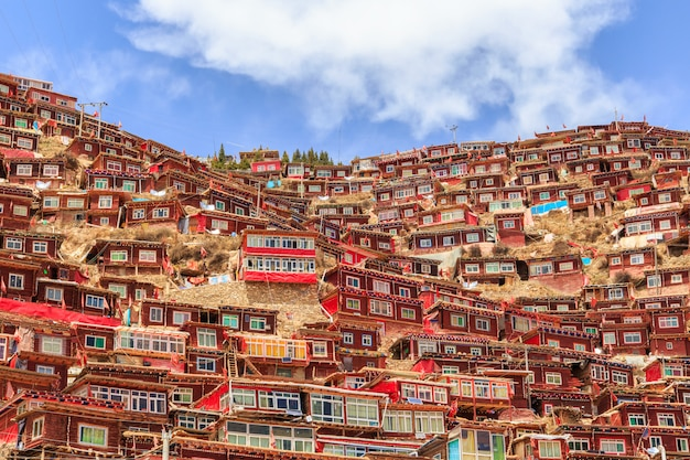 赤い修道院と日当たりの良い日と背景のlarung gar(buddhist academy)の家