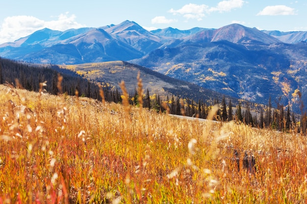 산에서 늦은 가을 시즌