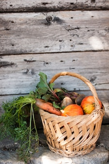 Lateral view  basket with pumpkins carrots and radishes
