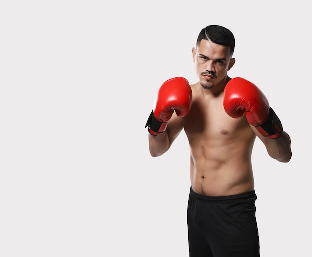 Latin american boxer fighter with white background