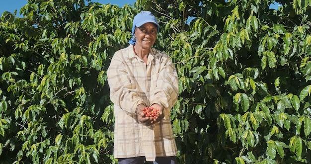 彼の手で摘んだ赤いコーヒー豆を示すラテン女性の農夫
