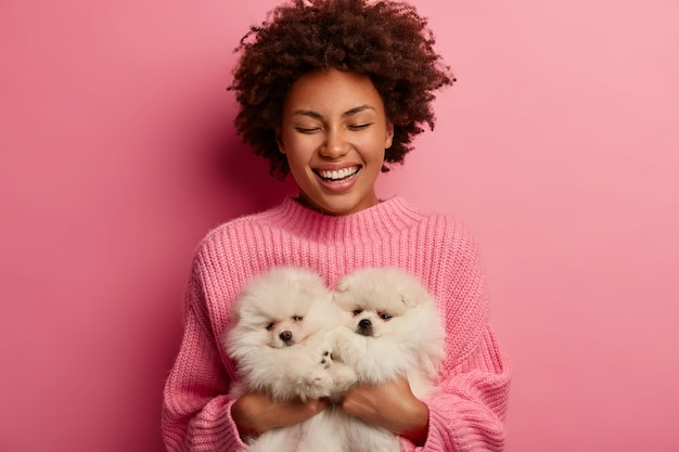 Laughing dark skinned woman keeps eyes closed from pleasure, carries two fluffy pets, enjoys nice time, cares about spitz dogs, smiles broadly, isolated on pink background.
