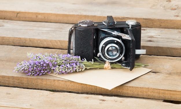 라벤더와 카메라.