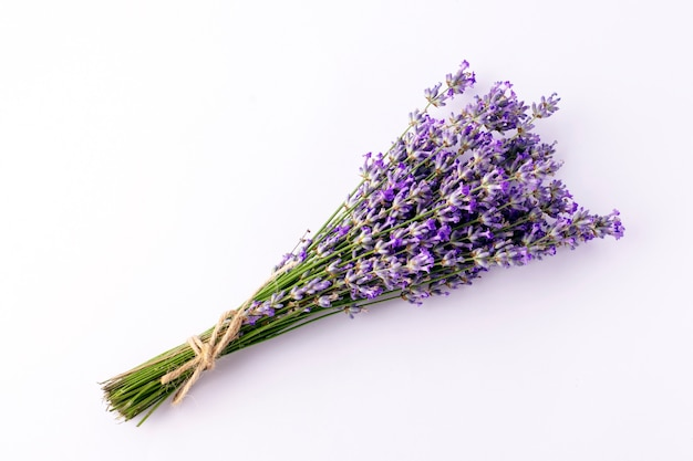 Lavender bouquet on white background.