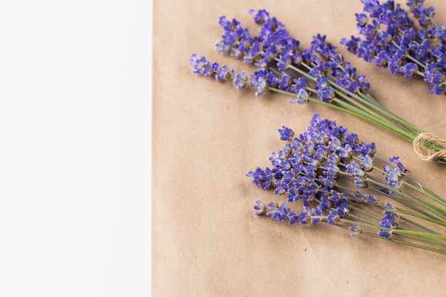 Lavender bunch on paper