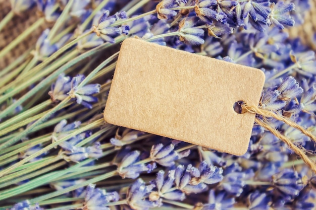 Lavender dried and the tag. selective focus.