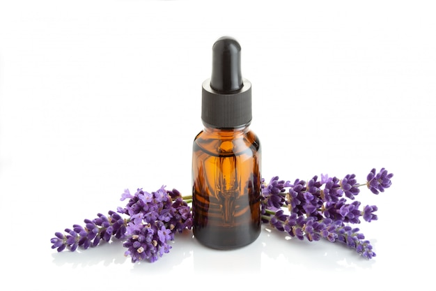 Lavender essential oil isolated