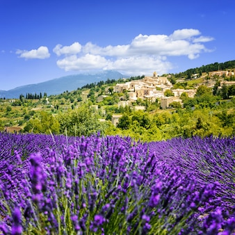 Lavender field and village, france.