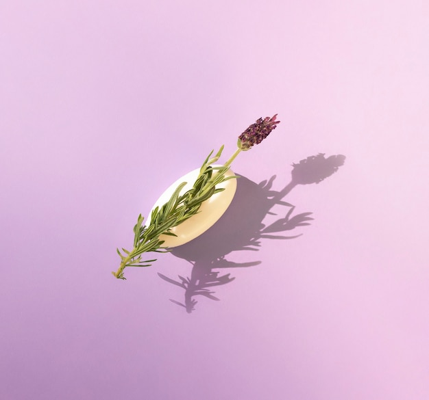 Lavender flower on a bar of soap casts a shadow on a lavender background