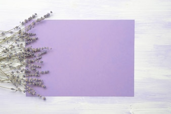 Lavender flower over the purple background against the wooden texture