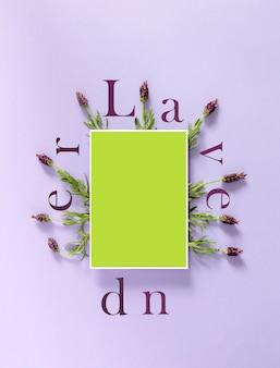 종이 주위에 라벤더 꽃과 축하 메모 초대장을 위한 비문 라벤더 템플릿 배경 디지털 라벤더는 크로마키를 조롱합니다.