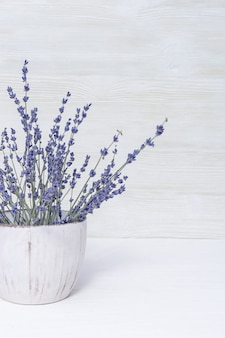 Цветы лаванды в белом вазоне