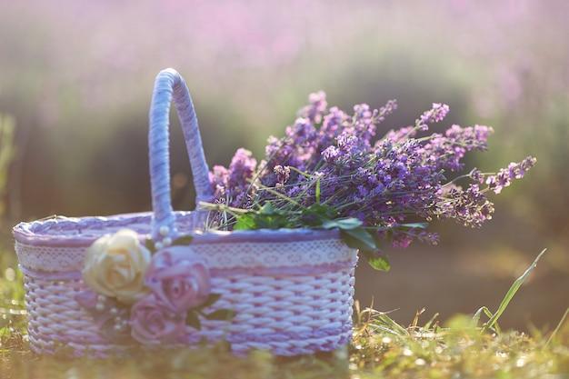 素晴らしいバスケットのラベンダーの花