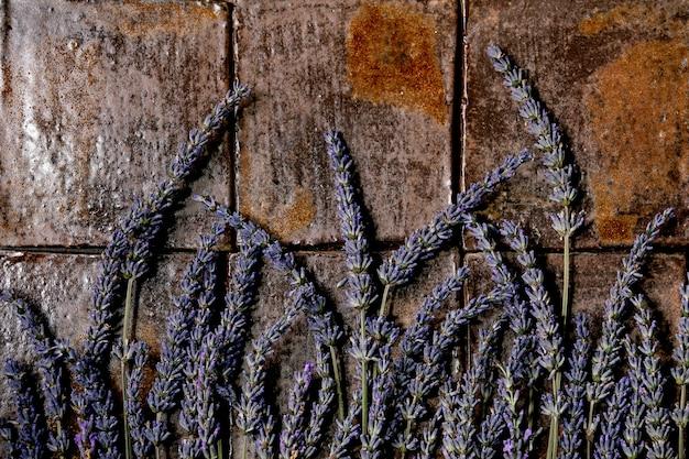 Цветы лаванды на темной плитке