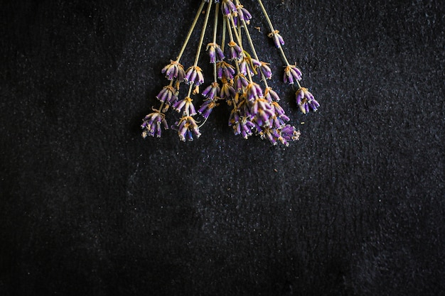 ラベンダーの花の茎と花びらの花束