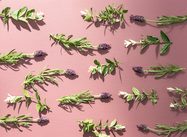 Lavender pattern on the lilac backdrop
