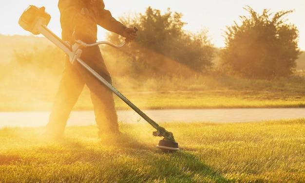 Уход за газоном и парковой зоной. солнечные лучи сквозь садовника.