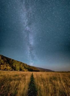 夜の灰色の空の下の芝生のフィールド