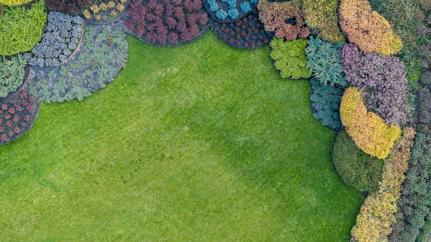 Lawn and flowerbed with ground cover plants background