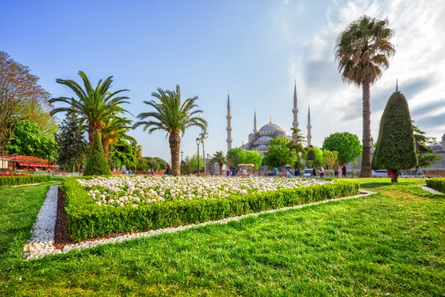 Lawn in front of sultan ahmed or blue mosque in istanbul, turkey