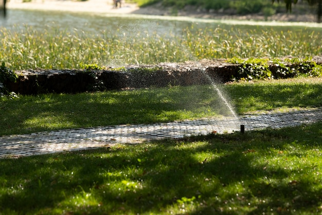 池の近くの石のタイルの小道に沿った芝生の灌漑システム