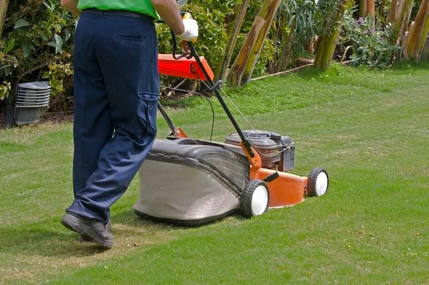 緑の草を刈る芝刈り機