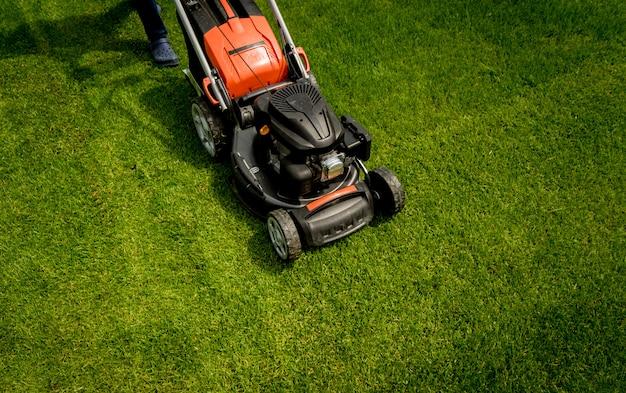 푸른 잔디에 잔디 깍는 기계. 여름 정원