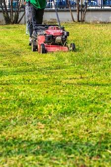 잔디 깎는 기계와 집의 정원입니다.