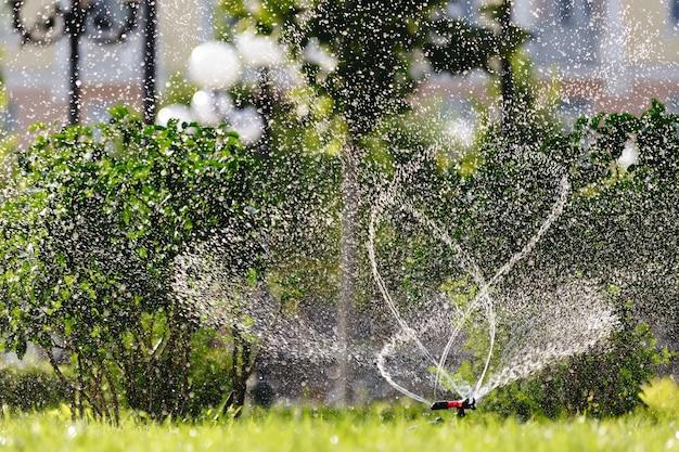 Дождеватель газона в действии разбрызгиватель сада в солнечный летний день во время полива зеленой лужайки