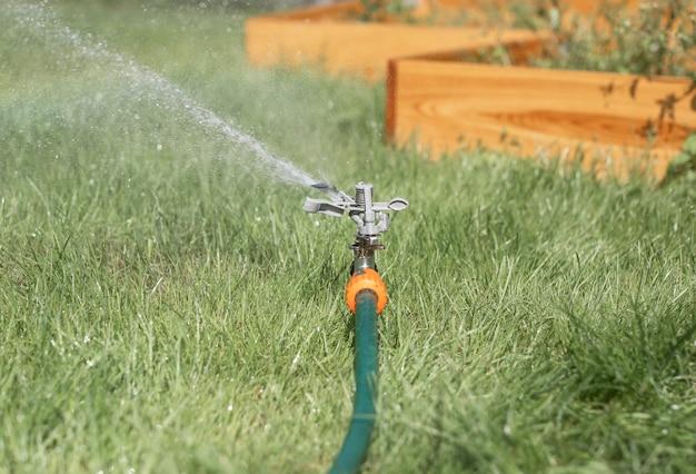 Дождеватель для газонов в зеленой траве, поливая сад с каплями воды