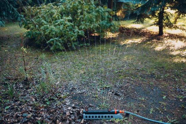 Спринклер для газона, распыляя воду над зеленой травой в садовом парке. система орошения.