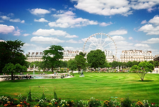 Lawn of tuileries garden at summer day, paris, france, retro toned