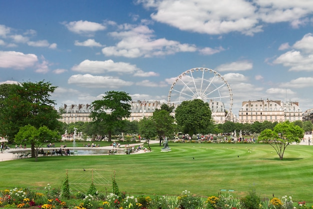 Lawn of tuileries garden at summer day, paris, france