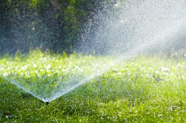 Вода спринклера лужайки распыляя над травой в саде на горячий летний день. автоматический полив газонов. садоводство и окружающая среда концепция.