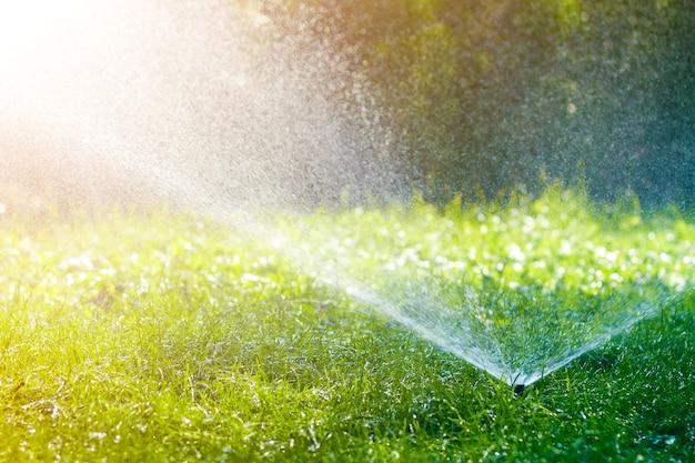 잔디밭 물 스프링 쿨러 잔디 위에 물을 분사 뜨거운 여름날에 정원 또는 뒤뜰에서 녹색 신선한 잔디. 자동 급수 장비, 잔디 유지 관리, 원예 및 도구 개념.