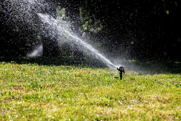 Lawn water sprinkler spraying water over