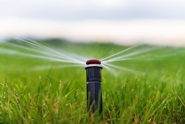 Полив газона автоматической системой полива с помощью дождевателя.