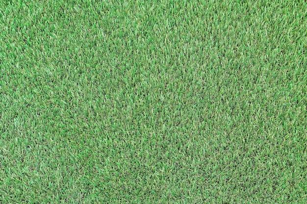 Лужайка со стриженной зеленой травой в качестве фона