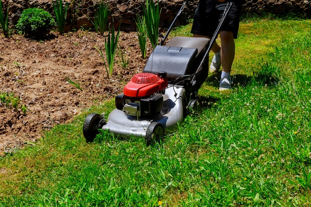 Lawnmower being used by gardener for mowing grass