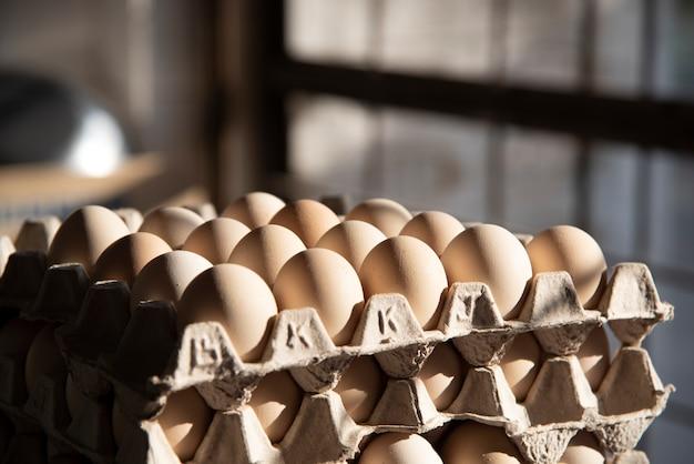 キッチンの紙パネルに卵を産みます。