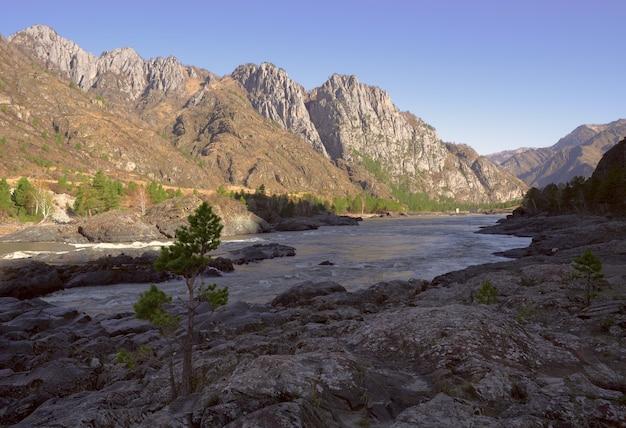 Многослойные разноцветные скалы на берегу горной реки сосна среди скал