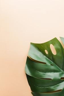 テキストのレイアウト。フラットは、テキスト用のスペースとヤシの葉で横たわっていた。夏のテーマ。