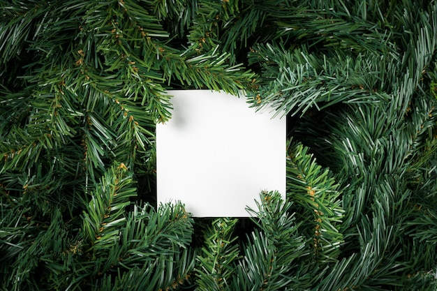 Layout made of christmas tree branches with paper card note on center. flat lay. nature new year concept.