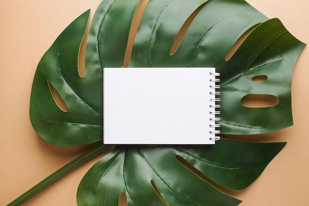 テキスト用のスペースとヤシの葉の上の紙のレイアウト。夏のテーマ。フラット横たわっていた。