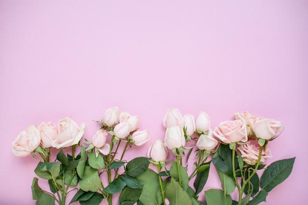 Макет нежных розовых кустовых роз на розовом фоне